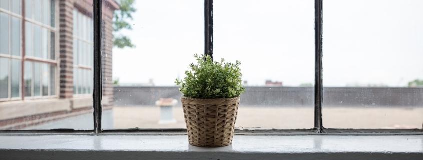 green home renovation tips