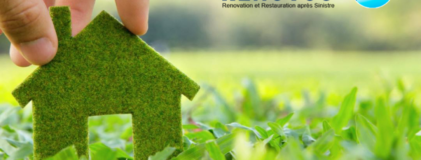 eco-friendly renovation tips
